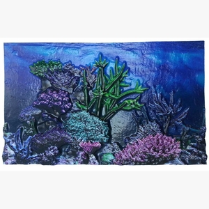 BioBubble 3D Background Coral Reef