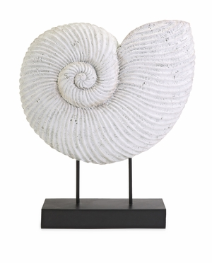 IMAX Chic Looking Ramsey Sea Shell on Stand