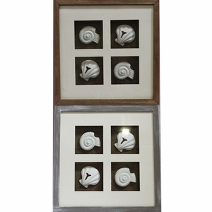 Classic MDF Seashell Shadow Box  2 Assorted