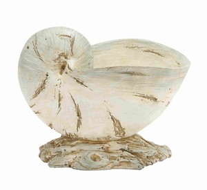 Elegant and Classy  Polystone Shell with Unique Design - 69483 by Benzara