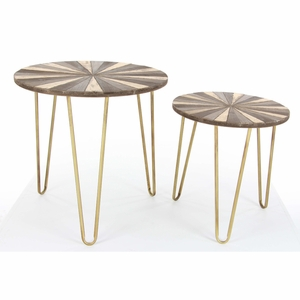 Cute Orotund Metal Accent Table, Set Of 2 - 98729 by Benzara