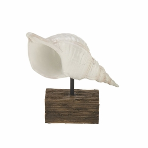 Decorative PS Shell Sculpture - 62495 by Benzara