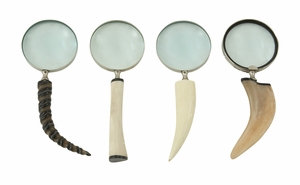Enthralling Metal Magnify Lens 4 Assorted - 53919 by Benzara