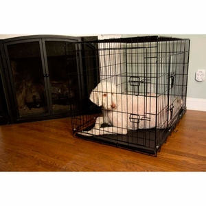 Iconic Pet - 42 Inch Foldable Double Door Pet Dog Cat Training Crate with Divider