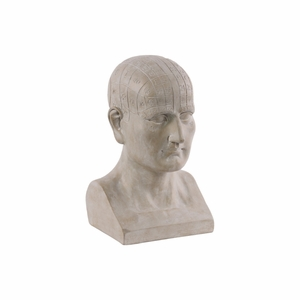 Phrenology Ornamental Bust with Engraved Number Labels - Brown  - Benzara