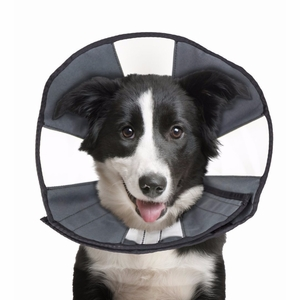 ZenPet ProCone Pet E-Collar for Dogs and Cats