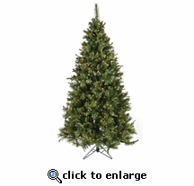 6.5' Nordmann Fir Tree (500 clear OR multi  lights)