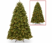 "7.5' ""Feel Real"" Newburgh Douglas Fir 750 Clear Lights"