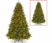 "7.5' Poly ""Feel Real"" Georgetown Fir Tree 700 LED Lights"