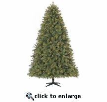 7.5' Prelit Greenland PVC Pine 750 Clear Lights