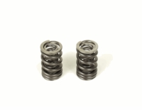 Honda CRF150F Valve Springs by BBR