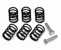 Kawasaki KLX110 Clutch Springs by Red Baron