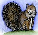 Tiny Squirrel A8894