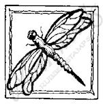 B6223 Dragonfly Square