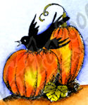 B9840 Crow With Small Pumpkins