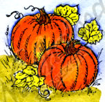 B9844 Two Small Pumpkins With Leaves