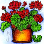 C10241 Small Geranium Pot
