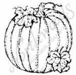 C2783 Pumpkins With Leaves