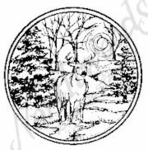 C6311 Deer and Snowy Spruce Circle