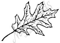 C725 Red Oak Leaf