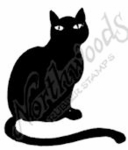 C7535 Small Black Cat