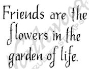 C9499 Basic Friends Are The Flowers