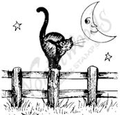 C9581 Cat On Fence With Moon