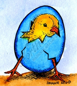 C9958 Hatching Chick 1