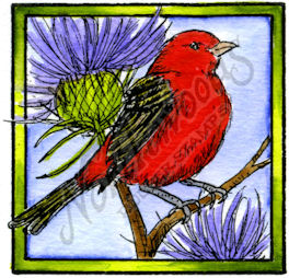 CC10183 Scarlet Tanager In Square Frame