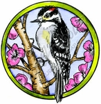 CC10195 Downy Woodpecker In Circle Frame