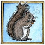 CC10222 Isaac's Squirrel In Square Frame