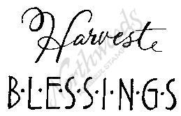 CC4817 Dash Harvest Blessings