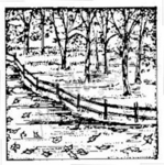 CC6242 Fall Fence Square