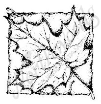 CC6286 Sugar Maple Leaf In Square