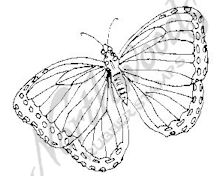 CC6668 Butterfly 6