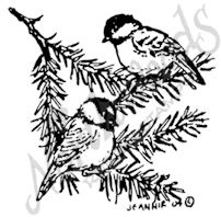 CC7677 Chickadees On Pine Branch