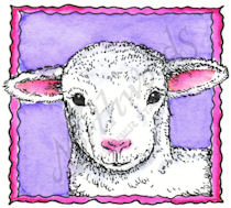 CC8460 Lamb In Deckle Square