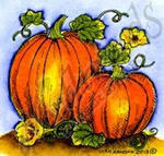 CC9215 Pumpkin Pair
