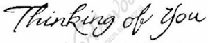 D4535 Cursive Thinking Of You