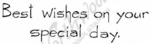 D4678 Simple Best Wishes On Your Special