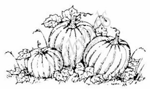 E3719 Three Pumpkins-Small