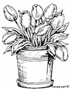 F1399 Pot Of Tulips