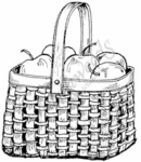 F7593 Apples In Square Basket