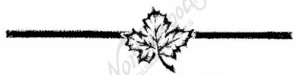 I6213 Maple Leaf With Line