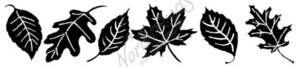 I7616 Solid Veined Leaf Border