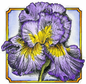 PP9451 Iris Blossom In Notched Square