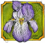 CC9449 Iris Blossom In Small Notched Square