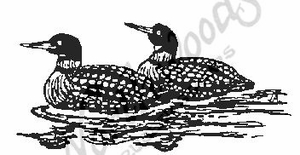 J1709 Loon Pair - Large