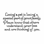 Losing A Pet Is Losing A Special - D10451