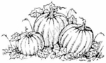 M3719 Three Pumpkins-Medium